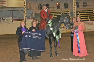 NAC 2010 - An image showing the presenting of a ribbon to the 2009 Grand Champion.