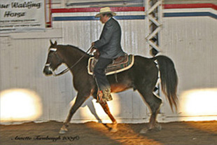 NAC 2010 - An image of a man wearing a grey suit while riding atop a dark brown horse.