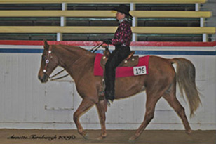 NAC 2010 - An image of a rider wearing a Black and pink shirt atop a chestnut coloured horse.