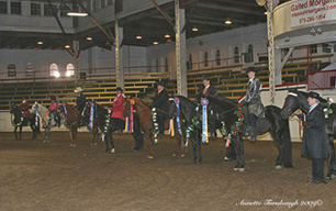 NAC 2010 - An image of Horses lined up with their riders sporting various ribbons.