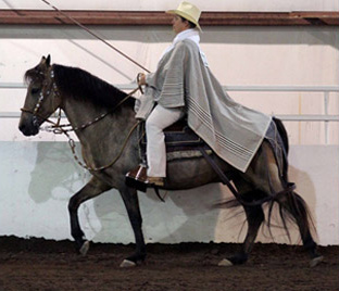 NAC 2011 - An image of a man in white with a long poncho sitting atop a grey horse.