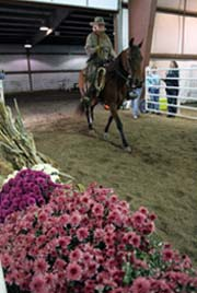 NAC 2011 - An image of a person riding their horse past a display of flowers.