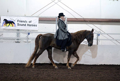 NAC 2011 - An image of a woman in a long grey shirt atop a dark brown horse.
