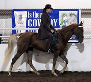 NAC 2011 - An image of a woman in a dark brown suit atop a dark brown horse.