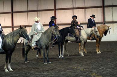 NAC 2011 - An image of the different riders and horses lined up for inspection.