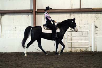 NAC 2011 - An image of a rider wearing black and pink atop a White and black horse.