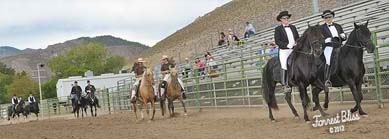 NNGHC 2012 - An image of Horses and Riders in pairs riding a parade around the pen.