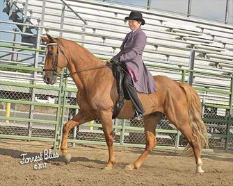 NNGHC 2012 - An image of a woman wearing a bowler hat riding a light brown horse.