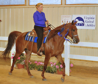 Cathy Warren and Trixie Trax of Wesley Chapel Florida win the Fosh Horse of the Year 2009