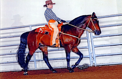 FOSH Horse of the Year, 2007