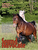 Sound Advocate Nov-Dec 2015